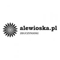 alewioska